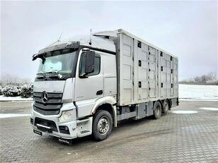 MERCEDES-BENZ Actros 2543 6x2 camión para transporte de ganado