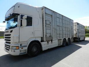 SCANIA R560 camión para transporte de ganado + remolque para transporte de ganado